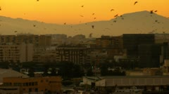 Malaga city spain dusk Stock Footage