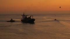 Sunset freighter birds Stock Footage