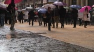 Pedestrians under rain with umbrellas. Stock Footage