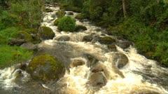 Rain swollen jungle stream Stock Footage
