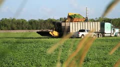 Agriculture machinery dumps produce into a truck, farmer helps Stock Footage