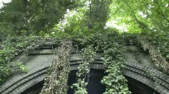 Disused railway arch with hanging ivy Stock Footage