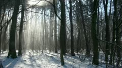Winter 20120205 115338 Stock Footage