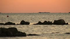 Ducks flying at sunset in a bay Stock Footage