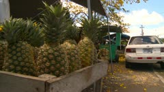 Stock Video Footage of pineapples and cars, Conception, Panama