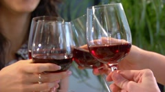 Girls clink glasses at the table - stock footage