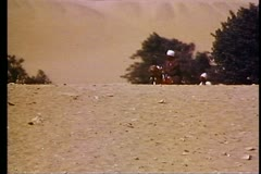 Camels on the desert, Arab riders, two cresting desert hill 108184 Stock Footage