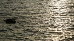 Waves Sunset Stock Footage