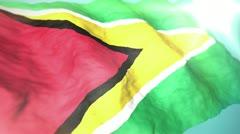 3d flag Guyana Stock Footage