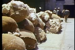 Piles of cotton outside of factory, medium shot Stock Footage
