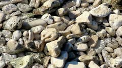 Fresh sea water on white stones Stock Footage