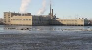 Factory on Water with Birds Flying By Stock Footage