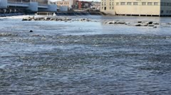 Wide Shot of Water, Dam and Factory - stock footage