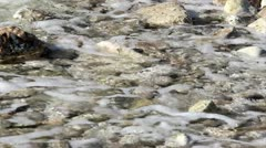 Rocks and ocean waves Stock Footage