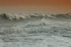 Storm Gale Stock Footage