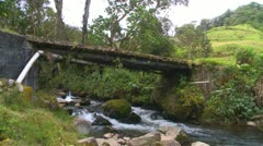 Silver SUV crosses rough bridge over rain forest stream bridge Stock Footage