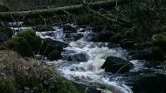 Running water in a stream - stock footage