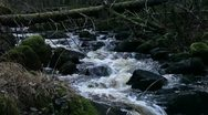 Stock Video Footage of Running water in a stream