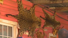 Animal pelts jaguar and ocelot on side of store in Panama, #2 Stock Footage