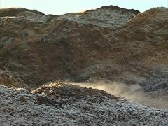 Stock Video Footage of evaporate wood chip pile