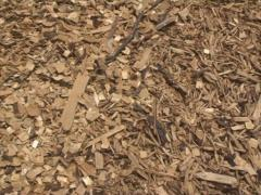 Nature friendly fuel Stock Footage