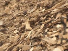 Wood chips sawdust stack Stock Footage