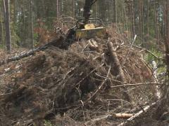 timber handling truck - stock footage