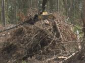 Timber handling truck Stock Footage