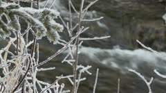 Snow covered tree branch rack to creek Stock Footage