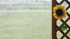 Wooden fence on snow with sunflower Stock Footage