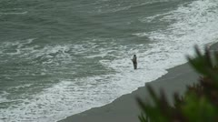 Man fishing on beach Stock Footage