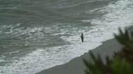 Stock Video Footage of Man fishing on beach