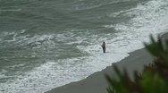 Stock Video Footage of Man fishing on beach