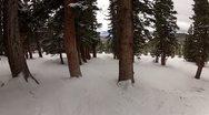 POV Tree Skiing Stock Footage