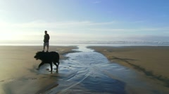 Man and Black Lab at Beach Stock Footage