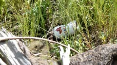 A beer can in the grass Stock Footage
