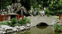 Chinese or Japanese Rock Garden Stock Footage