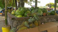 Paso Canoas, fruit cart on side of road, watermelon and pineapples Stock Footage