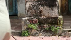 French Colonial: Tilt Up Moldy Facade of vintage French Colonial Building Stock Footage