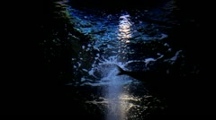Night and underwater Stock Footage