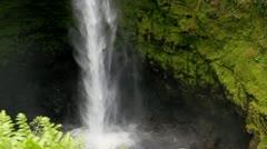 Akaka Falls, Hawaii closeup Stock Footage