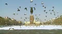 Pigeons in front of monument of King Tomislav Stock Footage
