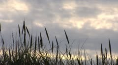 Clouds-Sunset-Klitm09-03 - stock footage