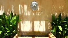 Lion Head Fountain Stock Footage