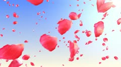 Flying rose petals in the sky. HD. Loop. Stock Footage