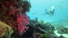 Scuba diver swimming by colorful coral reef Stock Footage