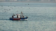 Fishing boat seagulls 1/2 Stock Footage