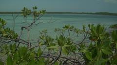 Bahamian sea colors Stock Footage
