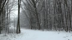 Bicycle trail covered in snow Stock Footage