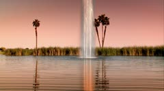Palm Tree Water Lake Ocean Stock Footage